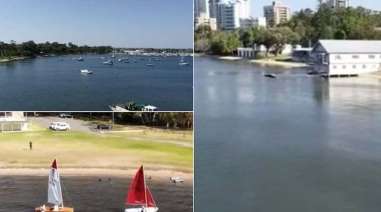 https://au.avalanches.com/perth_health_department_issue_warning_after_potentially_toxic_algae_discover18453_19_12_2019