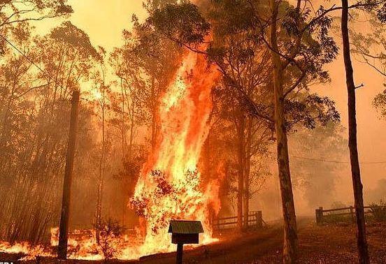 https://au.avalanches.com/sydney_hazardous_smoke_covers_north_of_sydney_termed_as_megafire16215_07_12_2019