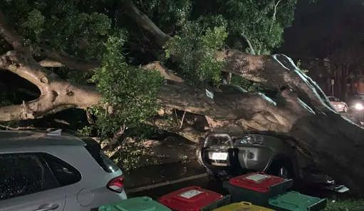 https://au.avalanches.com/sydney_new_extreme_weather_conditions_in_nsw31079_19_02_2020