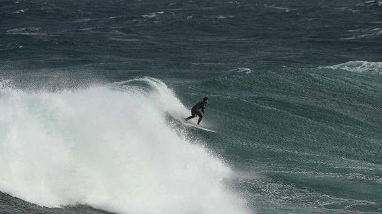 https://au.avalanches.com/sydney_surfer_in_sydney_was_attacked_by_a_shark24261_17_01_2020