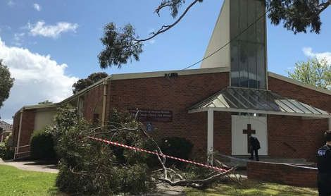 https://au.avalanches.com/melbourne_a_tree_nearly_killed_children_in_melbourne11294_12_11_2019