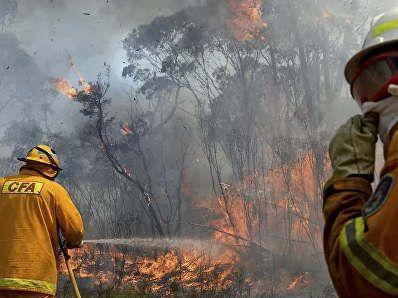 https://au.avalanches.com/melbourne_fires_have_reached_melbourne19639_24_12_2019