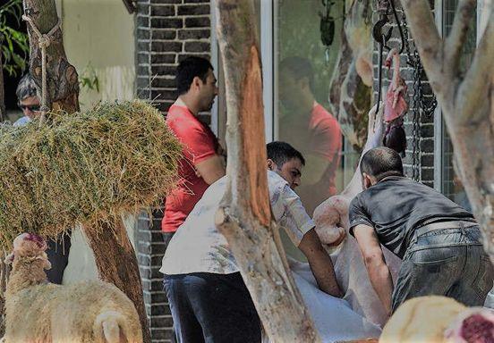 Бойни какие вели незаконную деятельность в бакинском поселке получили