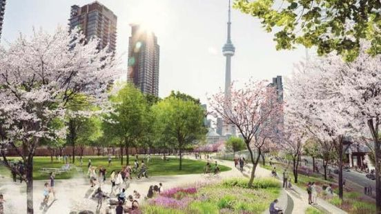 The city of Toronto wants to take charge of the airspace above the pro