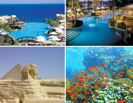 https://eg.avalanches.com/sharm_elsheikh__the_government_of_egypt_allowed_in_may_to_open_hotels_for_domestic_to208678_05_05_2020