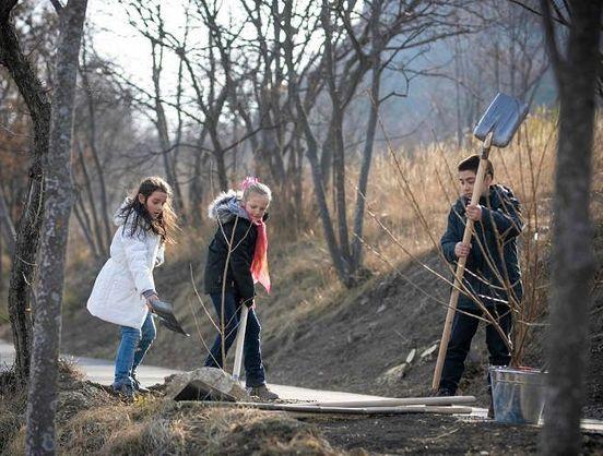 https://ge.avalanches.com/tbilisi_iaponyia_daryt_sazhents_sakur_hruzynskym_unyversytetam33054_28_02_2020