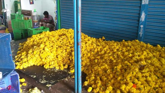 https://in.avalanches.com/chennai_flowers_worth_lakhs_ruined40493_01_04_2020