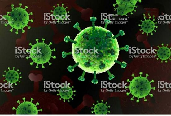 https://in.avalanches.com/hyderabad_corona_virus_disease_is_an_infectious_disease_caused_by_a_newly_discov194719_02_05_2020
