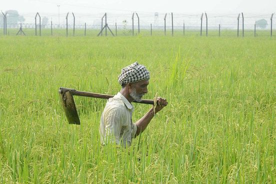 https://in.avalanches.com/delhi_strongfarmers_earnings_will_increase_after_budget2020strong27835_03_02_2020