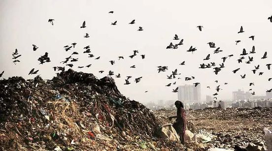 https://in.avalanches.com/delhi_ghazipur_landfill_site_to_ease_pressure_on_faces_political_hurdle5812_13_10_2019
