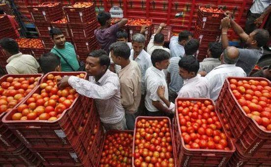 https://in.avalanches.com/delhi_tomato_price_in_delhi_touches_rs_80kg5315_11_10_2019