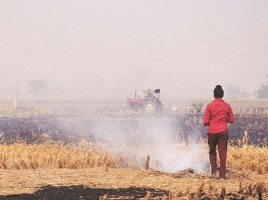 https://in.avalanches.com/delhi_cm_tweeted_for_stopping_stubble_burning_in_neighboring_states_as_it_increases_air_pollution_in_delhi11911_15_11_2019