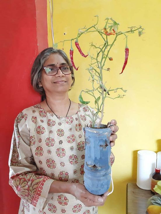 https://in.avalanches.com/mumbai_mumbai_lady_grows_food_forest_in_her_18_square_feet_balcony16513_09_12_2019