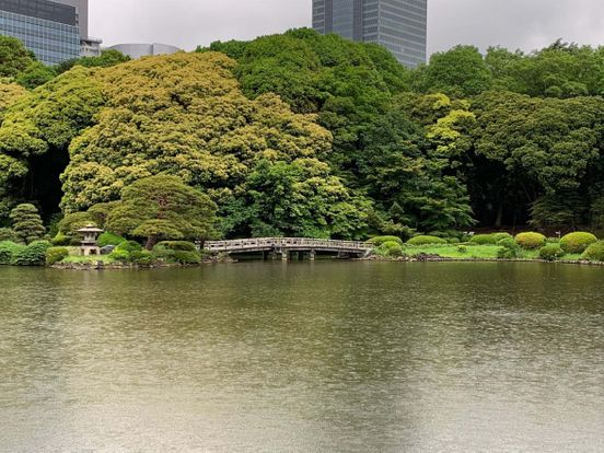 https://jp.avalanches.com/shinj_shinjuku_gyoen_national_garden_japan14543_28_11_2019