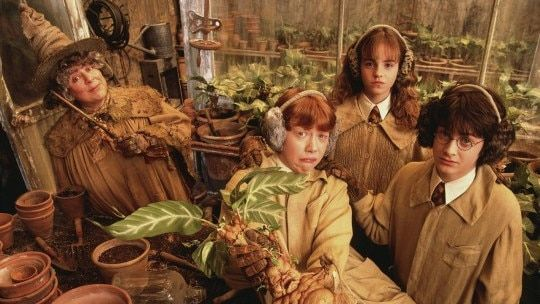 https://avalanches.com/world_news/ng/7newscomau/7news_harr224036_10_05_2020