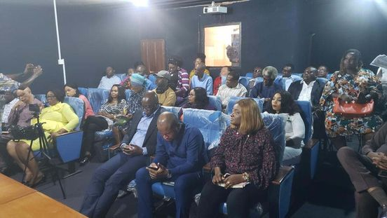 https://ng.avalanches.com/lagos_nfvcb_seeks_filmmakers_exhibitors_and_stakeholders_on_best_practices31584_21_02_2020