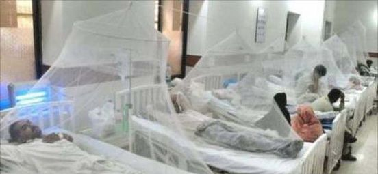 https://pk.avalanches.com/islamabad_in_rawalpindi_dengue_takes_another_life_total_count_reaches_to_254812_08_10_2019
