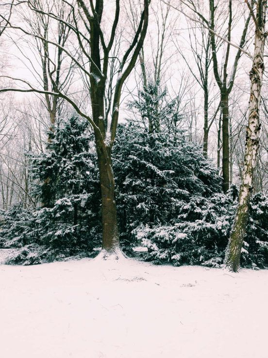 Czy już czekacie śniegu i zimy? Ja tak😊
