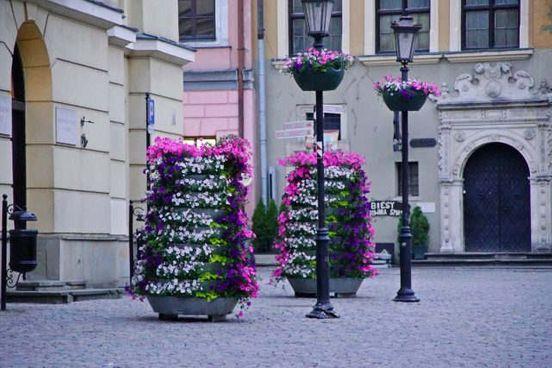 https://pl.avalanches.com/lublin__kolorowe_kwiaty_w_centrum_miasta_w_miecie_pojawi_si_ponad_6_tysic301512_20_05_2020