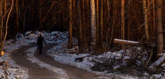 https://ru.avalanches.com/yekaterinburg_poteriavshehosia_pensyonera_v_lysu_nashly_mertvm12493_18_11_2019