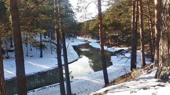 https://ru.avalanches.com/tyumen_hylvskaia_roshcha_pervaia_vesna_posle_okonchanyia_rekonstruktsyy37302_20_03_2020