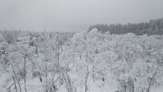 https://ru.avalanches.com/dudareva_kak_zhyt_v_horode_y_v_derevne_odnovremenno_lehko38563_25_03_2020