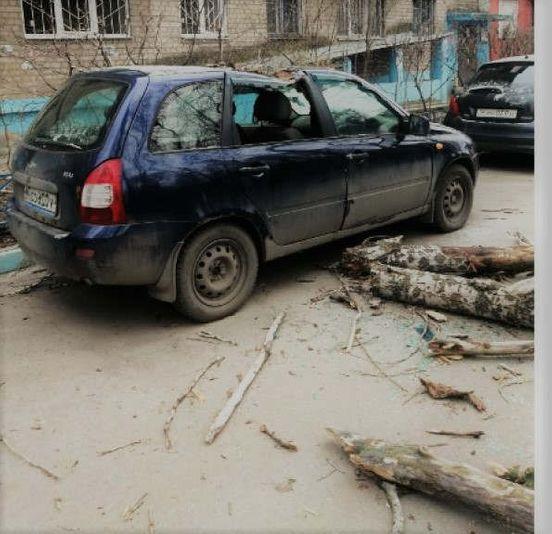 https://ru.avalanches.com/voronezh__yzza_sylnoho_vetra_v_voronezhe_upalo_piat_derevev_v_voronezhe_dvadts38103_23_03_2020