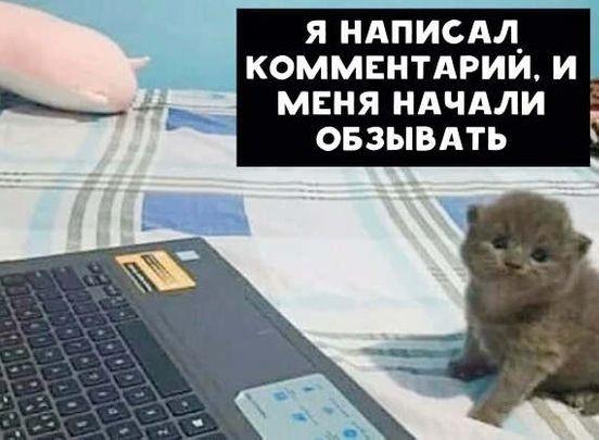 https://ru.avalanches.com/samara_294744_19_05_2020