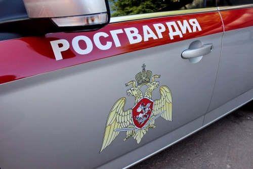 https://ru.avalanches.com/kazan_v_naberezhnkh_chelnakh_nariad_ovo_roshvardyy_zaderzhal_podozrevaemuiu_v_prych38670_25_03_2020