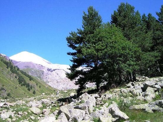 https://ru.avalanches.com/kavkaz_velykaia_hora_severnoho_kavkaza1980_23_09_2019