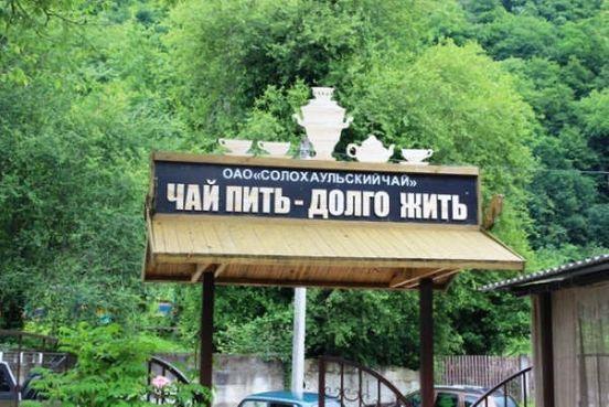 https://ru.avalanches.com/solokhaul_solokhaul_rodyna_mestnoho_chaia7332_23_10_2019