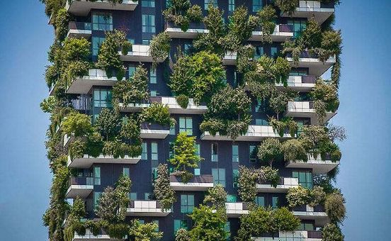 https://sg.avalanches.com/singapore_singapore_will_grow_food_on_house_roofs125636_20_04_2020