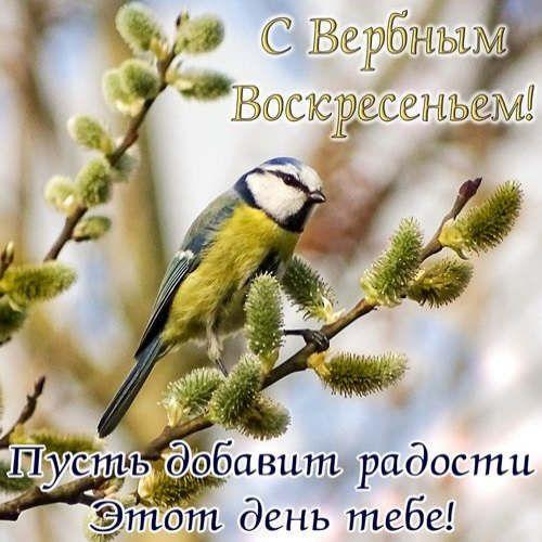 https://ua.avalanches.com/poltava__zi_sviatom_78590_12_04_2020