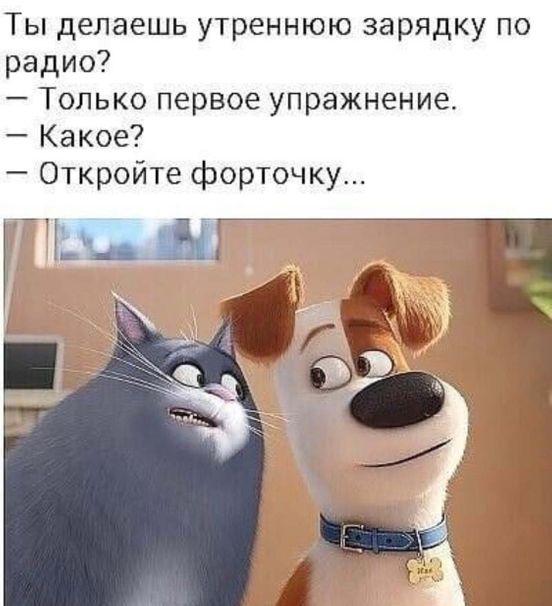 https://ua.avalanches.com/kyiv_186203_01_05_2020
