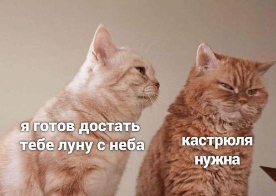 https://ua.avalanches.com/kropyvnytskyi_292007_19_05_2020