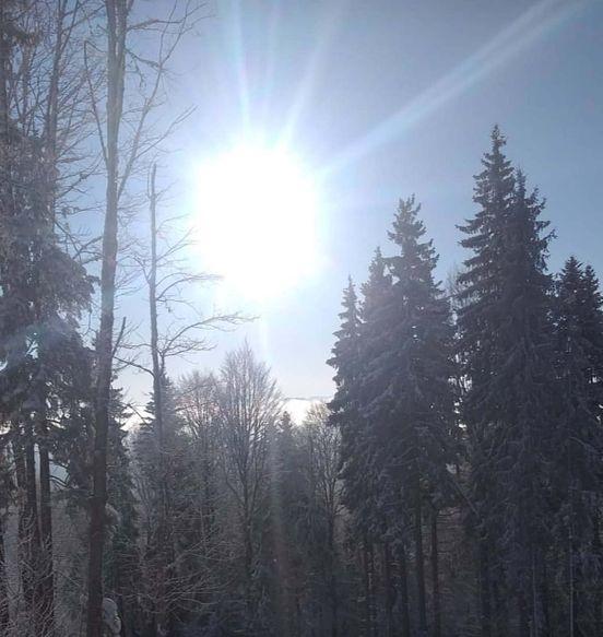 https://ua.avalanches.com/karpaty_svizhe_povitria_neimovirna_krasa_pryvitni_liudy_i_tse_vse_tut_v_karpatakh20803_31_12_2019
