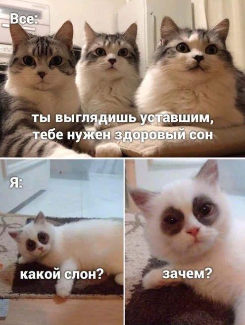 https://ua.avalanches.com/bilhoroddnistrovskyy_kohda_t_ustavshyi313331_22_05_2020