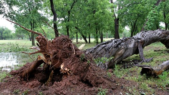https://us.avalanches.com/wichita__thunderstorm_downpour_causes_damage_in_the_wichita_fall_region_291962_19_05_2020
