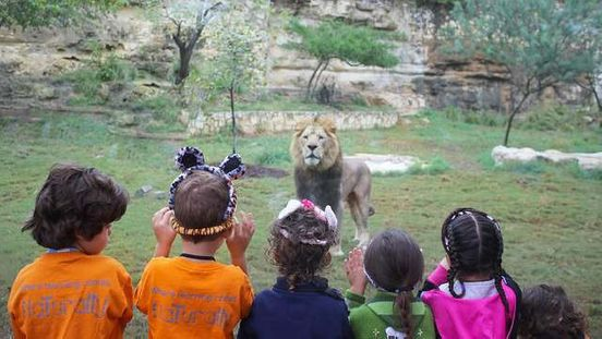 https://us.avalanches.com/san_antonio__zoo_in_san_antonio_is_losing_its_funds_due_to_covid19_shut_down_orde58028_08_04_2020