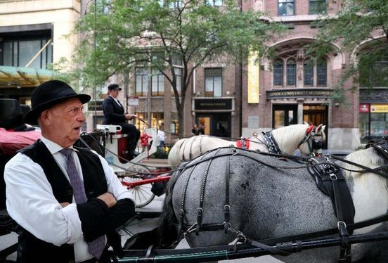 https://us.avalanches.com/chicago__chicago_city_council_votes_to_withdraw_horsedrawn_carriages_from_the174922_28_04_2020