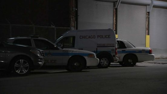 https://us.avalanches.com/chicago_4yearold_thornton_boy_killed_inside_his_home_suspect_accidental_sho49085_04_04_2020