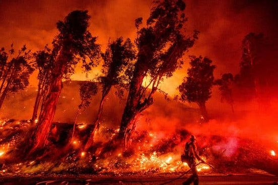 https://us.avalanches.com/los_angeles_amplified_budget_after_the_fire_hits_the_forests_in_california22978_11_01_2020