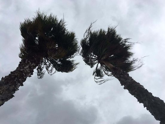 https://us.avalanches.com/san_diego_strong_winds_and_chances_of_heavy_rainfall_in_san_diego294753_19_05_2020