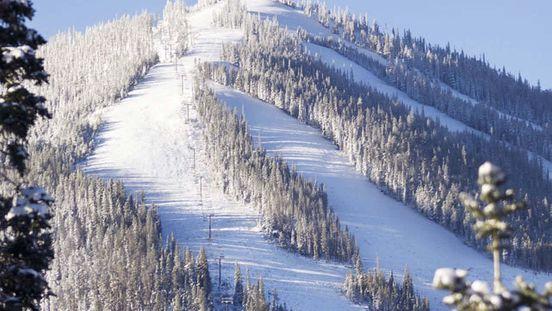 Missing skier found in trees near intermediate run, dies at Winter Par