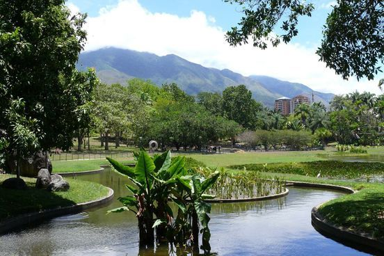 https://ve.avalanches.com/caracas_parque_del_este_la_belleza_absoluta_de_caracas208881_06_05_2020